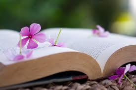 livro e flor