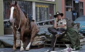 rick grimes and horse